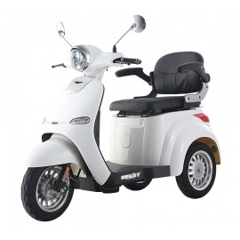 TRICYCLE SCOOTER ELECTRIQUE